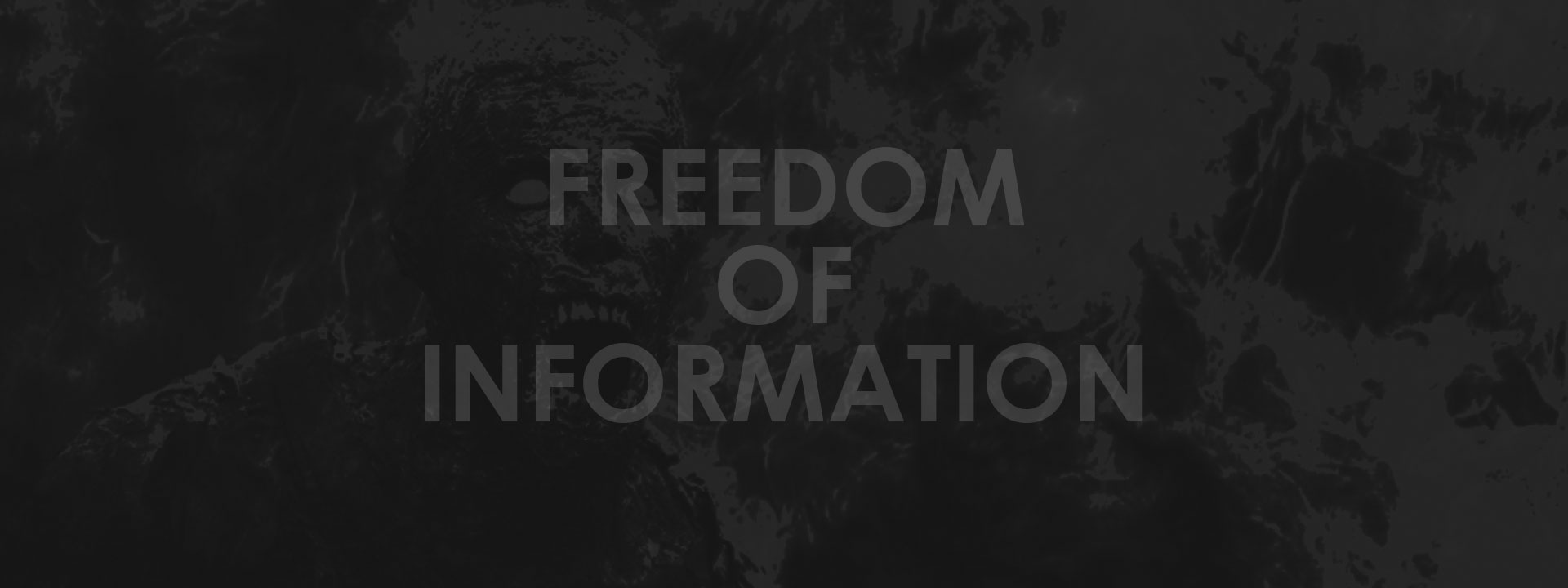Cost of Freedom of Information